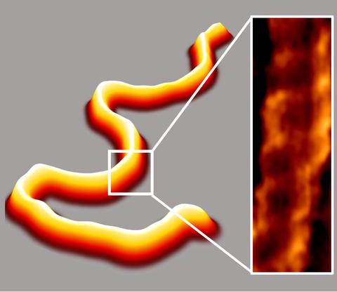 Three-dimensional rope the color of Candy Corn snaking across the field of view, with an inset close-up of a small piece showing a twisted ladder shape