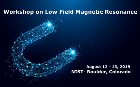 Low Field Magnetic Workshop