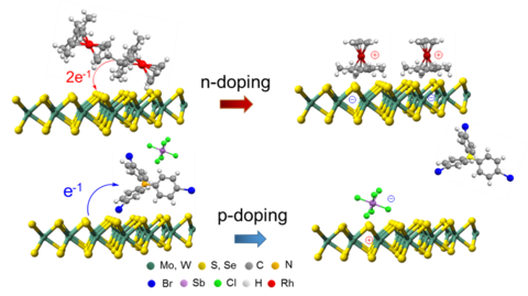 Schematic of interface engineering 2D materials.