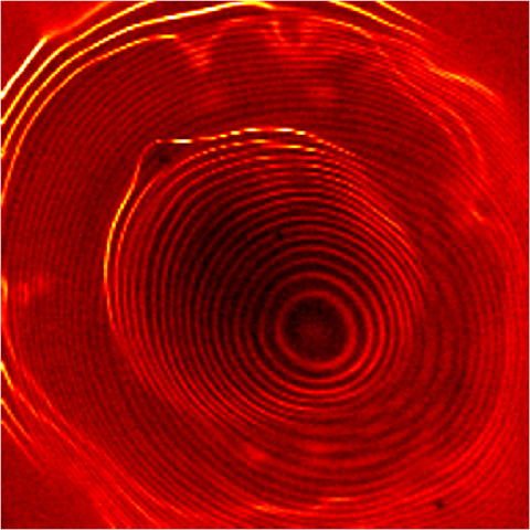 STM image of electrons in two coupled quantum dots