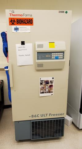 A119_ULT_freezer_thermo_forma