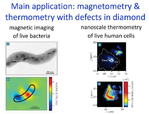 Collage of images; magnetic imaging of live bacteria and nanoscale thermometry of live human cells.