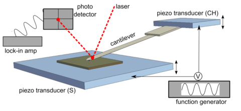 The AFM has multiple parts including cantilever, optical detection, sample scanning and more