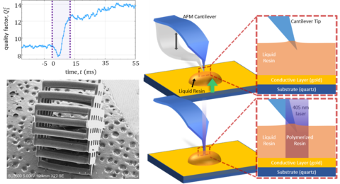 In SCRPR, the AFM cantilever is used as a photorheological sensor to measure voxel scale cure