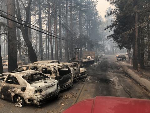 Abandoned vehicles alongside a charred road.