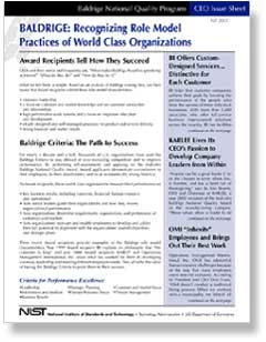 CEO Issue Sheet - Recognizing Role Model Practices Cover Page