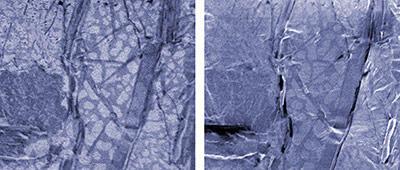 FIB image and SEM image of solder