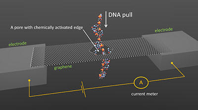DNA sequencing through a graphene nanopore