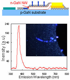 Semiconductor nanowire GaN NW LED;  electroluminescent spectrum