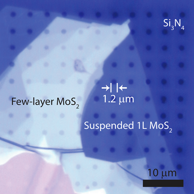 micrograph of moly flakes