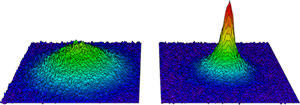 False color images of the molecular Bose-Einstein condensate forming