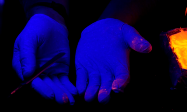A pair of hands inside nitrile gloves, photographed under ultraviolet light, with small amounts of glowing powder visible on the gloves.