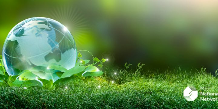 Earth sitting in green leaves on the grass as a renewable energy concept