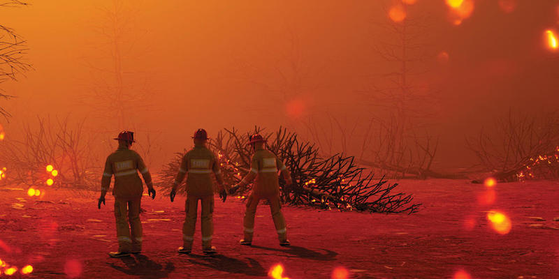 Photo of scorched earth and trees with three firefighters walking away