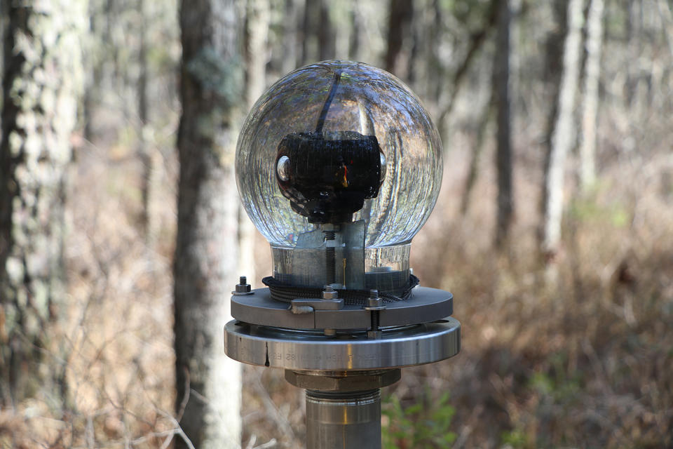 A glass globe on a metal pedestal holds a 360-degree camera in a wooded area.