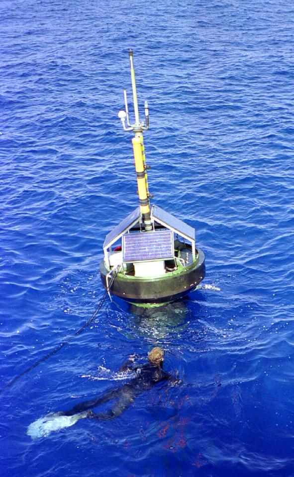 Photo of the Marine Optical Buoy