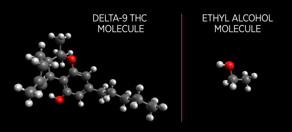 Illustration with light gray and dark gray balls with a few red balls, all connected, showing Delta-9 THC molecules and fewer connected light gray, darker gray and a red ball illustrating  and Ethyl Alcohol molecules