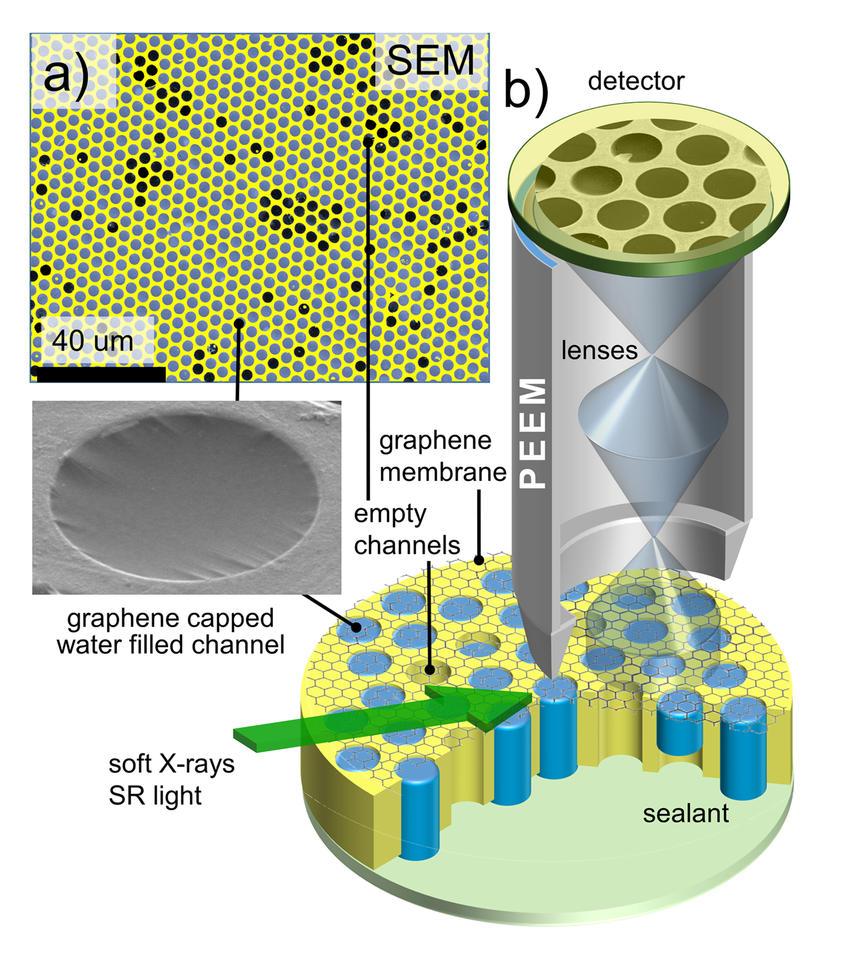 Graphene-capped Liquid Imaging Setup