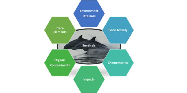 Multimodal Exposure Science