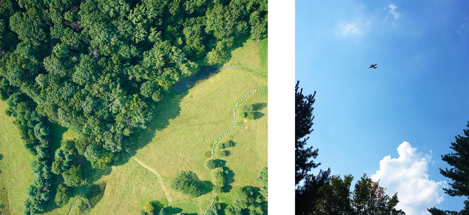 An aerial image of a forest and an image of a plane flying overhead.