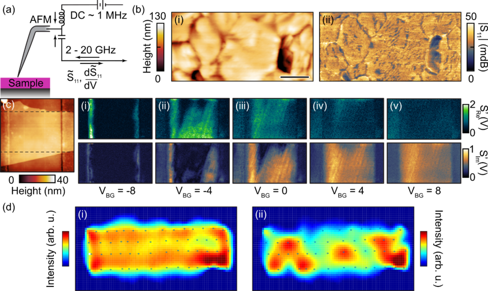 (a) Schematic of a near-field scanning microwave microscope (NSMM). (b) NSMM images of a perovskite PV sample, (c) NSMM MoS2 back-gate device, (d) Spatial imaging of excited spin wave modes.