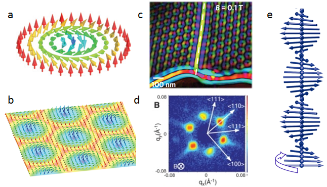 Figure 1, (a) Illustrative diagram of a single Bloch skyrmion and (b) skyrmion array. (c) Real-space Lorentz TEM image of skyrmion array and (d) SANS pattern from a skyrmion array.(e) magnetic helix state