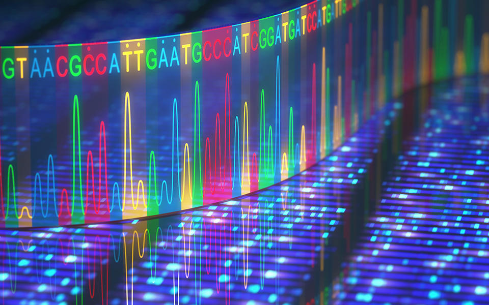 a stylized graphic of a ribbon of multicolored A's, C's, T's, and G's astride an electrophoresis readout