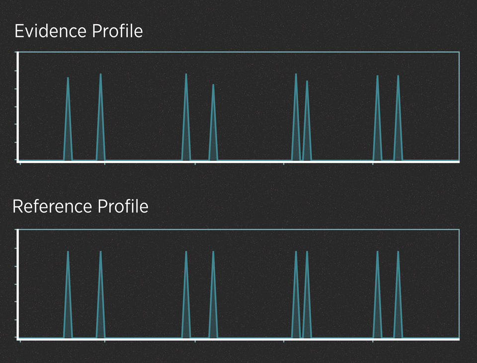 """Two series of peaks on a black background, one labeled, """"Evidence Profile,"""" and the other labeled, """"Reference Profile."""""""