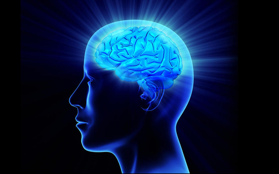 Illustration of a person's head showing their brain having a bright idea