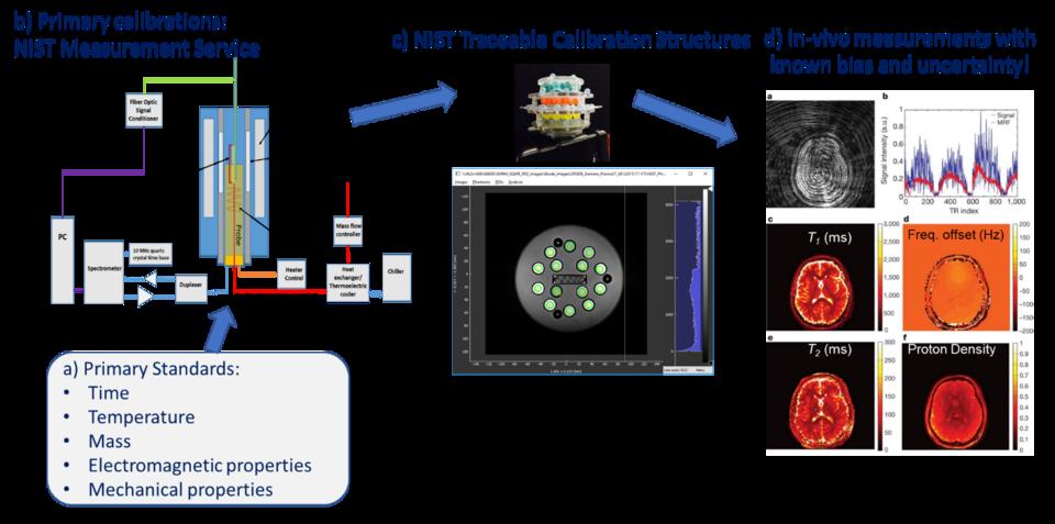 MRI biomarker measurement service