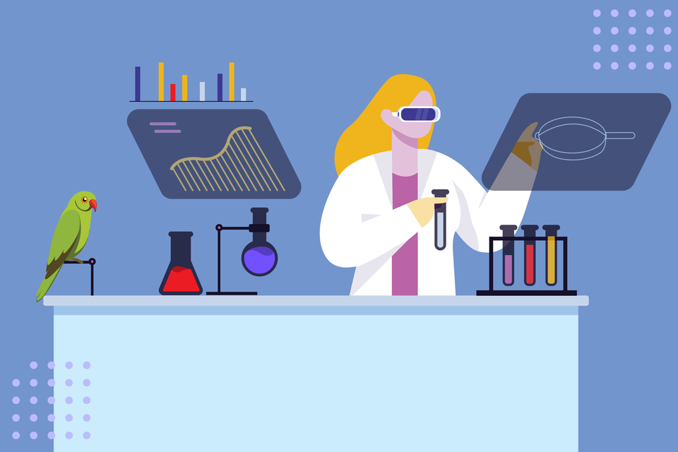 graphic showing scientist in her lab interacting with computer screen and chemicals. There is a parrot on a perch to her right.