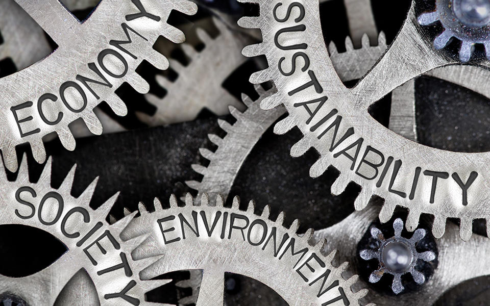 "intermeshed gears. They have the words ""society"", ""sustainability"", ""economy"" and ""environment"" written on them."