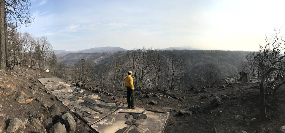 A researcher standing on recently burned terrain.