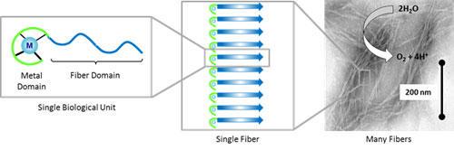 nanobiomaterials_1