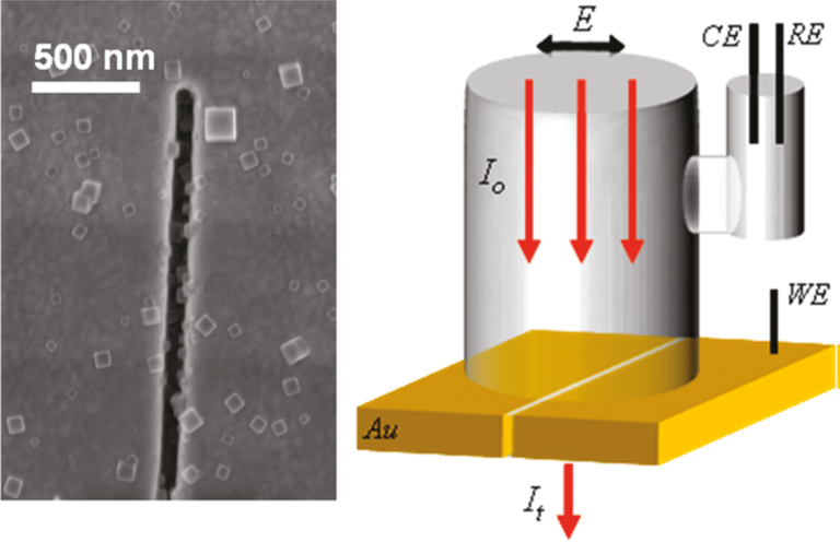 Nanocrystals of Prussian Blue inside a plasmonic nanocavity, and a schematic of an electrochemical cell for in situ optical spectroscopy.