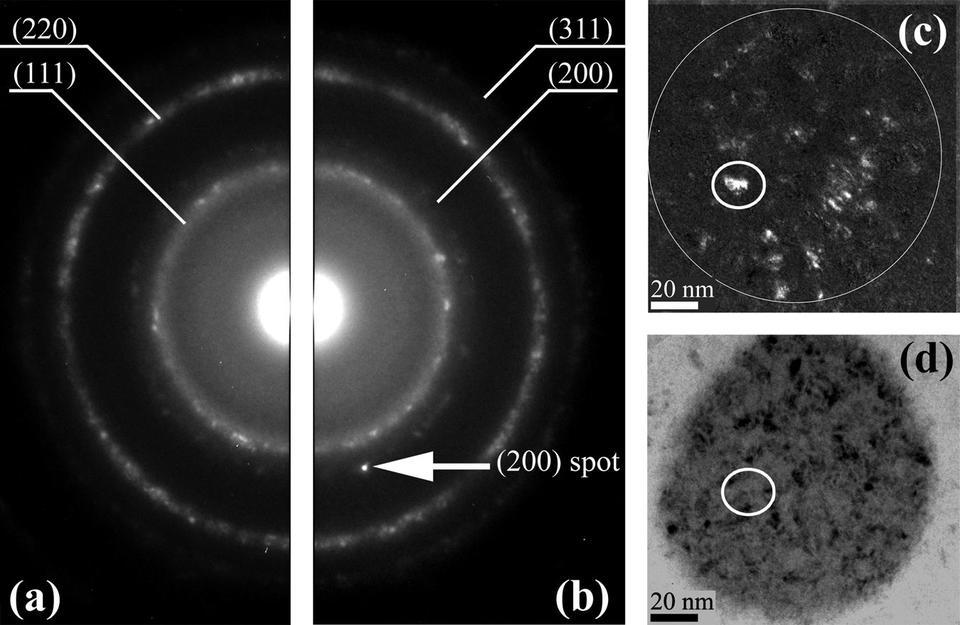 Trigger grain causes SFD in Co/Pd nanodots