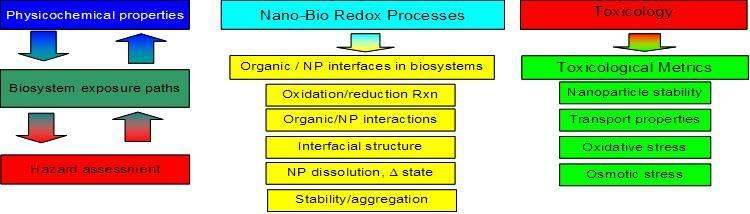 nanobioredox