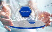 2019-2020 Baldrige Excellence Framework Criteria Overview highlighting the Workforce item.