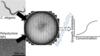 C. elegans toxicity assay