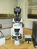Nikon Eclipse Microscope