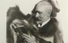 Platinum/palladium print portrait of William Willis, Jr. (1841-1923)
