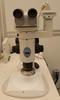 Photograph of the Nikon SMZ1500 stereo microscope.