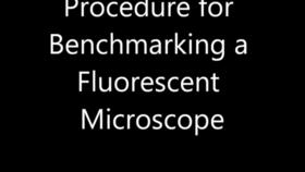 Procedure for Benchmarking a Fluorescent Microscope Thumbnail