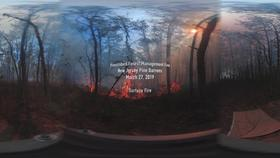 360° Video of Surface Fire during a Prescribed Burn in the New Jersey Pine Barrens on March 27, 2019 Thumbnail